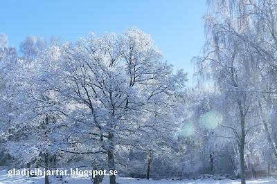 Sösdala, vinter, vackert,