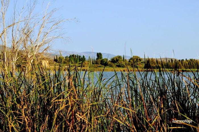 Laguna de Padul - A una hora de Granada - TuvesyyoHago