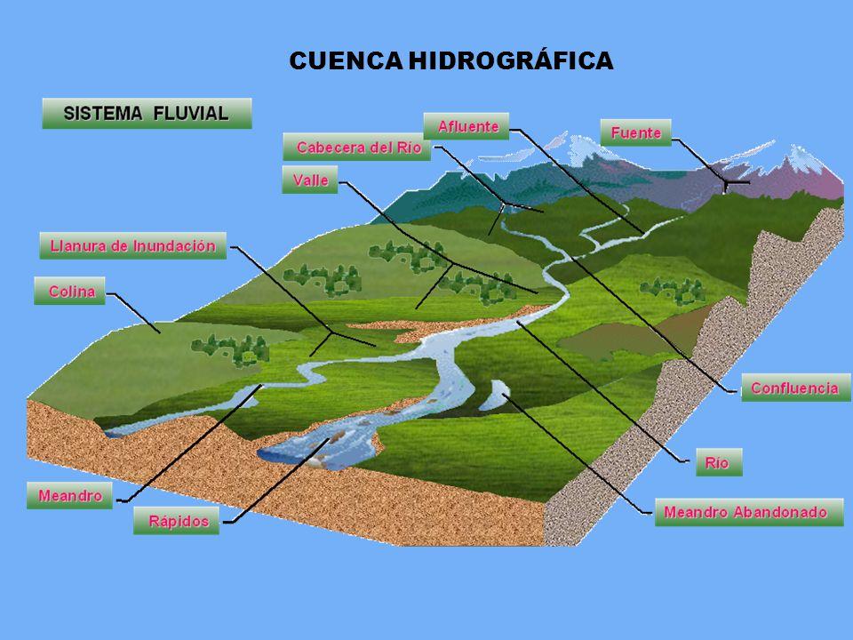 Cuenca hidrografica for Factores para seleccionar el terreno para el vivero