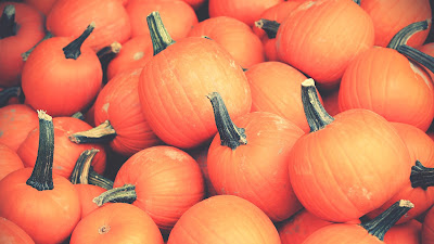 orange pumpkins hd resolution wallpaper