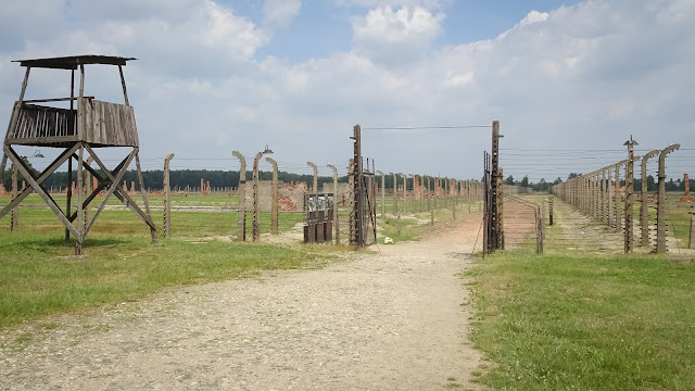 Huge area a size of dozens of soccer fields have to be observed in Auschwitz