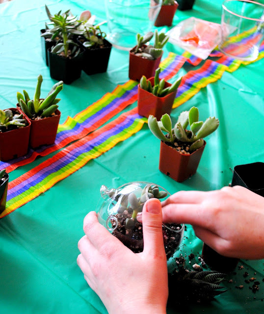 Succulent workshop fun happening at Fizzy Party