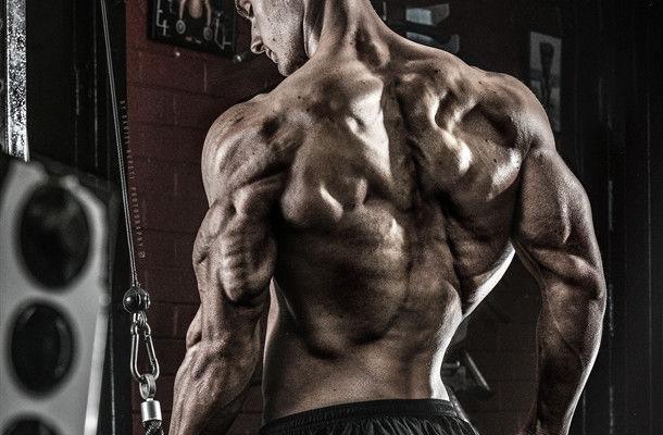 برنامج تمارين عضلات الظهر/ مجنص للمبتدئين ضخامة (بالصور)