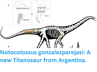 http://sciencythoughts.blogspot.co.uk/2016/04/notocolossus-gonzalezparejasi-new.html