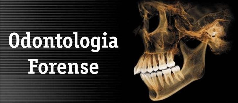 Conceito e importância da Odontologia Legal