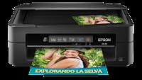 descargar gratis driver para impresora epson xp-211