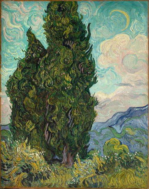 糸杉 Cypresses
