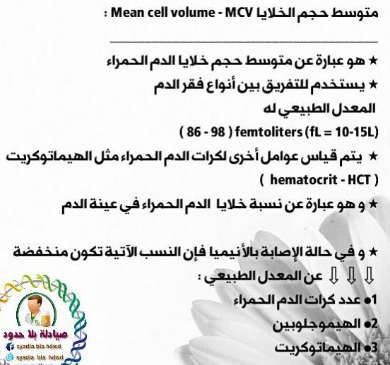 ماهو متوسط حجم الخلايا Mcv واسبابا لزيادة والنقصان دكتور عمار خليل