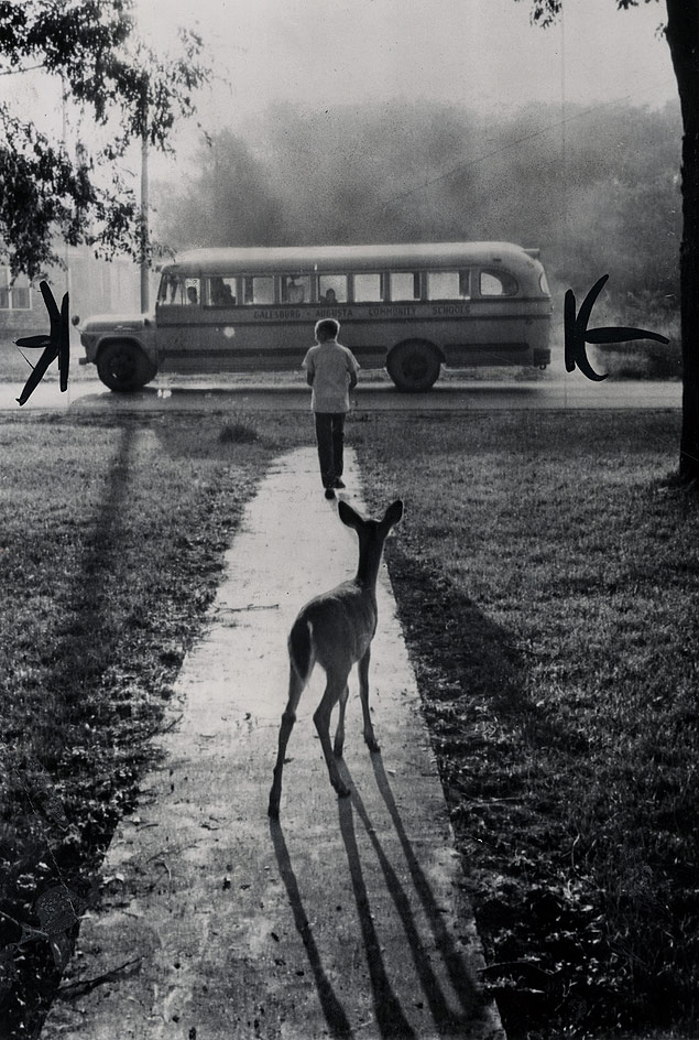 40 Amazing Historical Pictures - The pet fawn of Brad Curry of Galesburg, Michigan, watches him depart from home every morning on his schoolbus, 1960