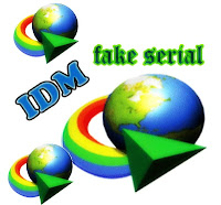 IDM Fake Serial Number