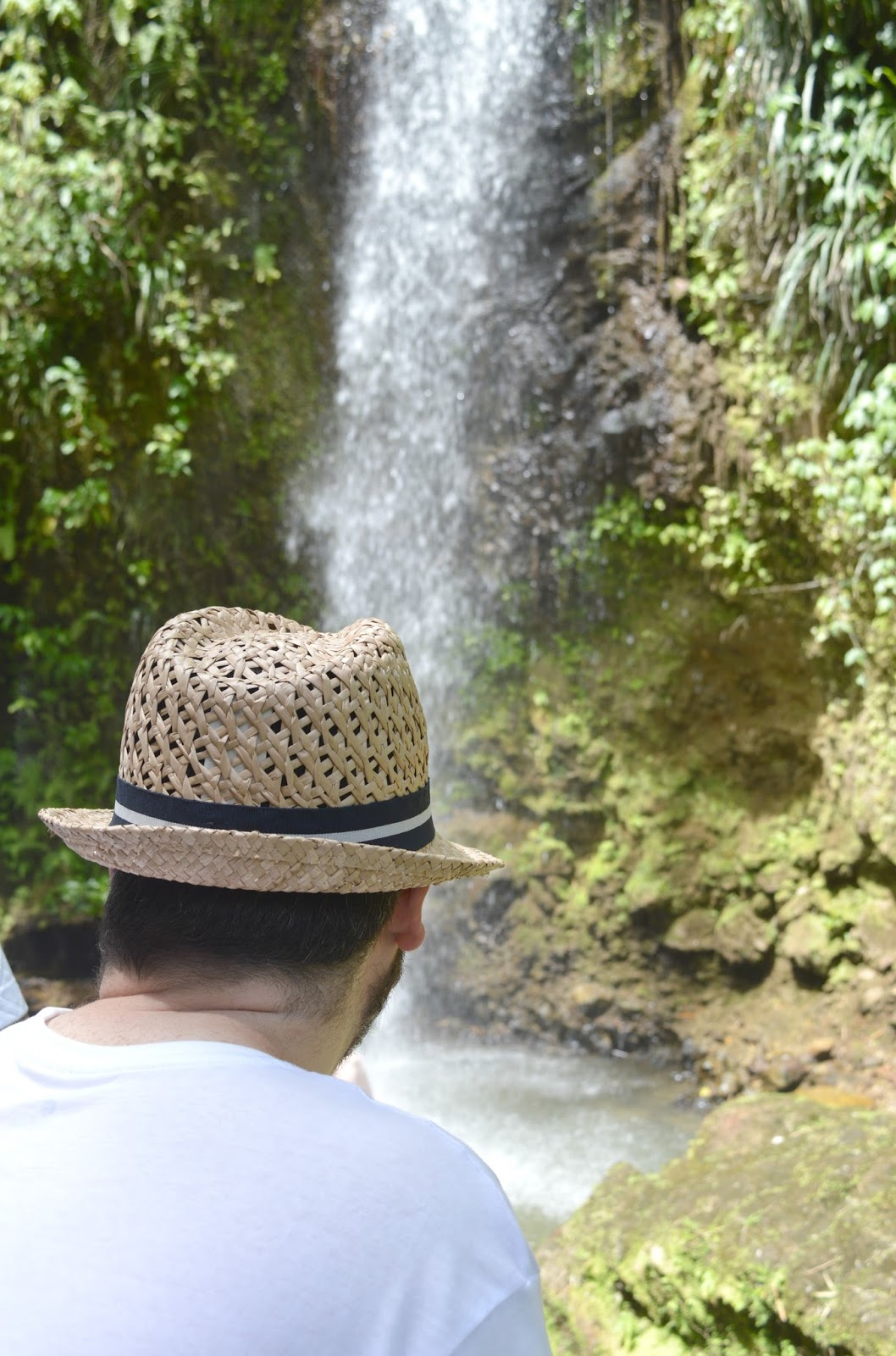 Toraille Waterfall St Lucia