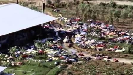 kasus bunuh diri massal people temple