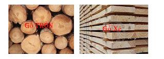 nguyên liệu gỗ thông