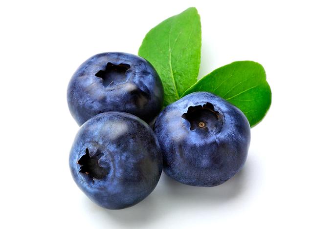manfaat dan khasiat blueberry