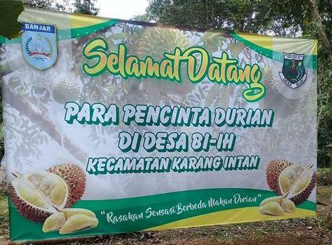 Berbagai Jenis Durian Akan Ramaikan Kontes Durian di Biih