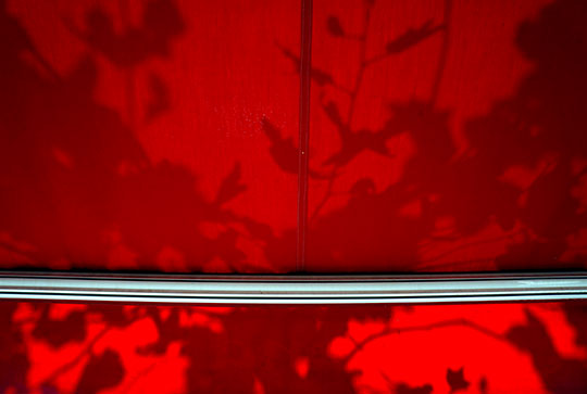 contemporary photography, art, Sam Freek, shadows, plants, red, travel, traveling, Spain,