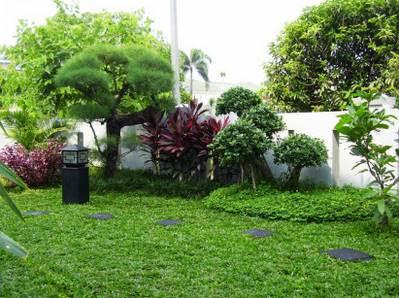 Contoh Gambar Desain Taman Rumah Minimalis Terindah