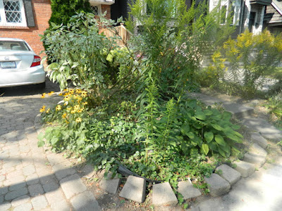 Toronto Deer Park summer garden cleanup after by Paul Jung Gardening Services