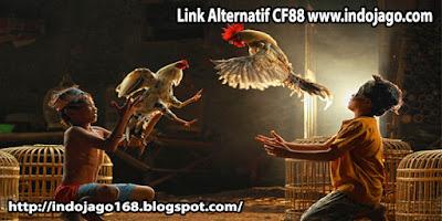 Link Alternatif dari CF88vn adalah www.indojago.com