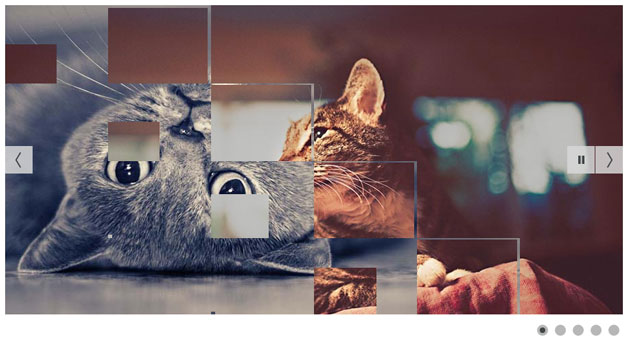 Image Slider Widget With Transition Styles