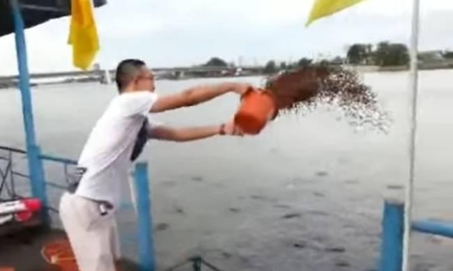 Πήρε 23 κουβάδες με ψαροτροφή και τους πέταξε στη θάλασσα! Δεν έχετε δει ποτέ αυτό που έγινε. ΒΙΝΤΕΟ