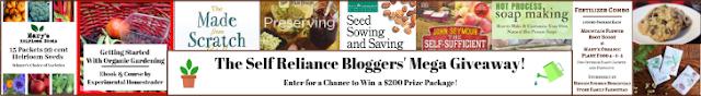 Self-reliant bloggers' mega giveaway