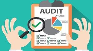 Auditoria de estados financieros | Proceso de auditoria financiera