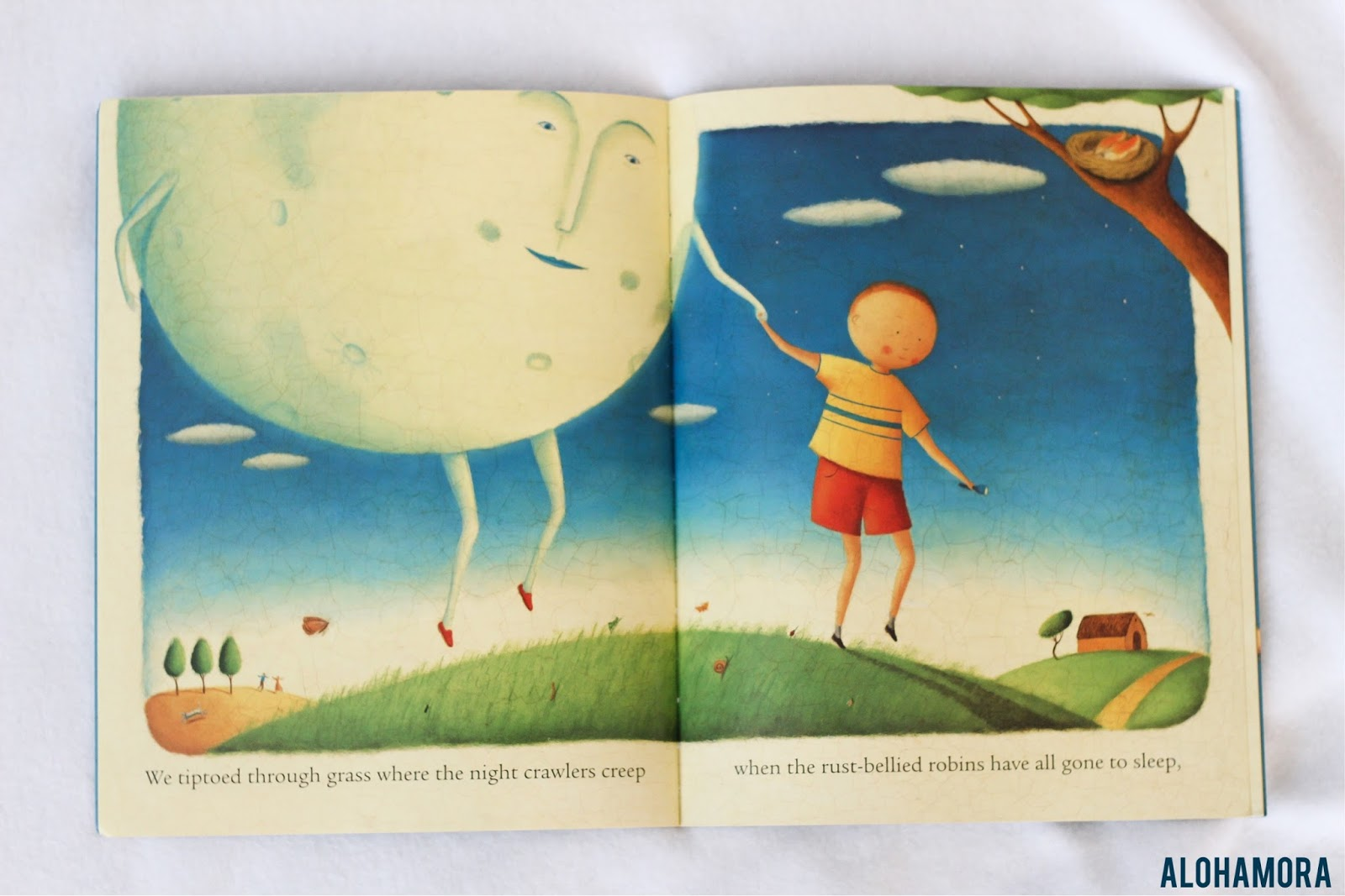 Alohamora: Open a Book: I Took the Moon for a Walk gets 4 Stars ...