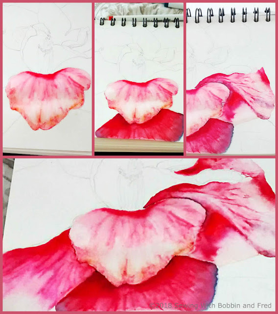 Collage of watercolour of a camellia in various stages