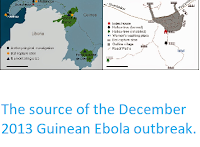 http://sciencythoughts.blogspot.co.uk/2015/01/the-source-of-december-2013-guinean.html