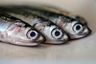 Resep Cara Memasak Ikan Tenggiri Bumbu Rujak