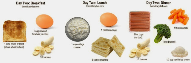 Military Diet Day 2