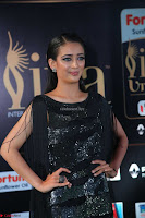 Akshara Haasan in Shining Gown at IIFA Utsavam Awards 2017  Day 2 at  04.JPG