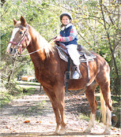 Kid's love riding horses at Big Rock