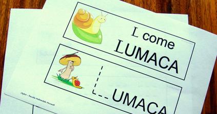 Scarica i libretti del pregrafismo, per giocare e imparare l'alfabeto!