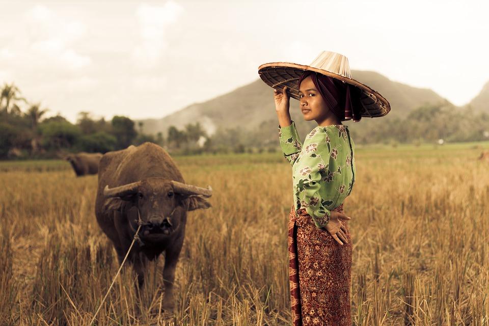 Contoh Pidato Bahasa Sunda Tentang Kebudayaan Singkat