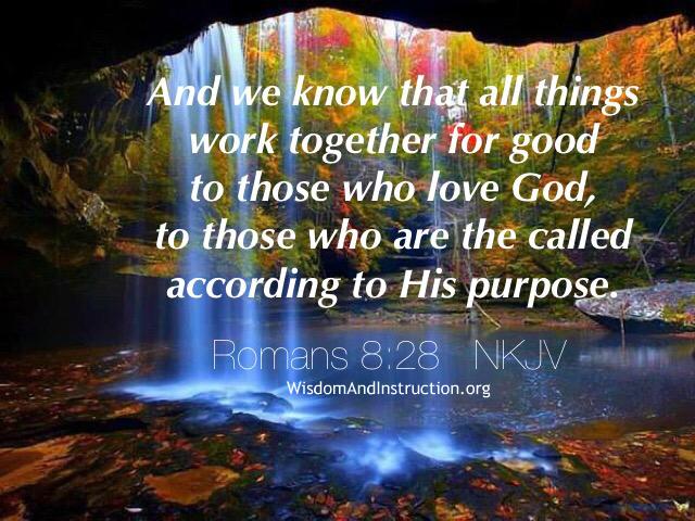 Wisdom and Instruction: Romans 8:28 NKJV