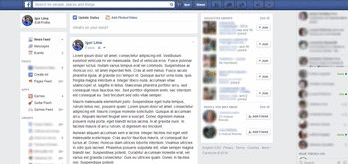 Tema facebook's new design +