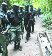 When the police arrived at the Ogwugwu Akpu, Ogwugwu Idigo and Ogwugwu Isiula shrines, decomposing corpses and skeletons in decaying coffins littered the two sides of the road