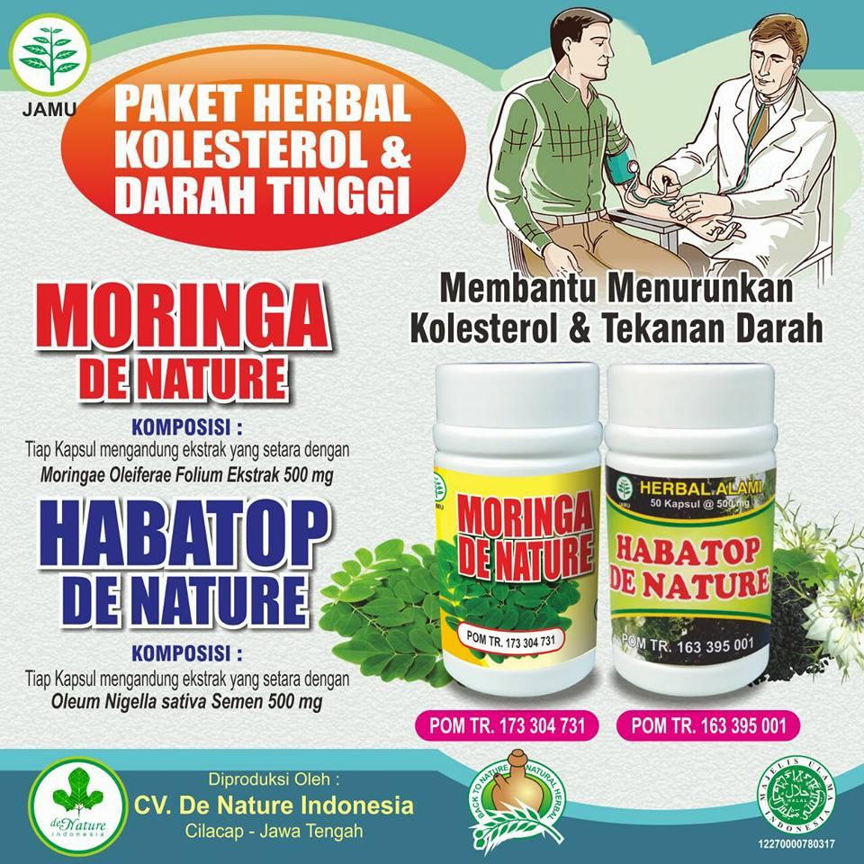 Obat Kolesterol Tinggi Herbal de Nature