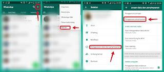 Penggunaan dan Penyimpanan Whatsapp