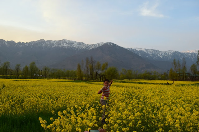 backpacking kashmir