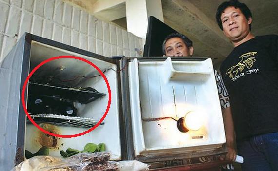 Cewek Ini Beli Kulkas Bekas Murah Seharga Rp 400 Ribu, Setelah Dibuka Ternyata Ada Sesuatu Yang Mengerikan Di Dalamnya