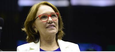 Resultado de imagem para senadora zenaide maia