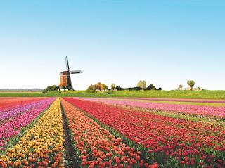 عشر أشياء لا تعرفها عن دولة هولندا