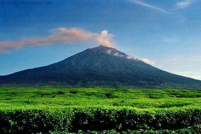 Gunung Kerinci Semburkan Abu Vulkanik 600 Meter