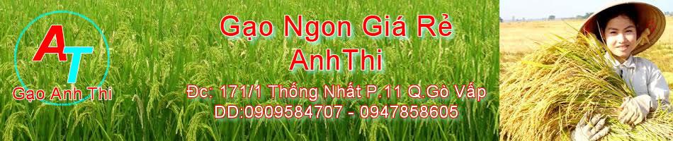Giá gạo hôm nay|Gạo ngon online giá rẻ