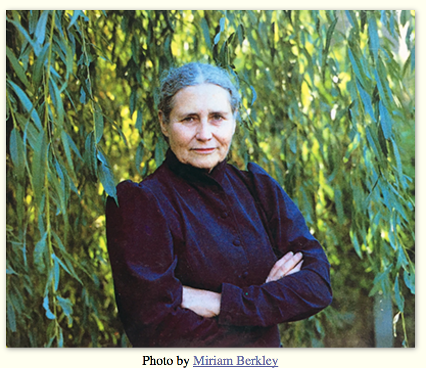 doris lessing: flight essay The free flight concept beneficial or detrimental essay group minds, doris lessing discusses our paradoxical ability to call ourselves individuals and our inability to realize that groups define and influence us.
