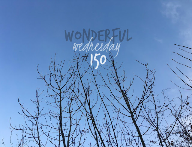 Wonderful Wednesday #150