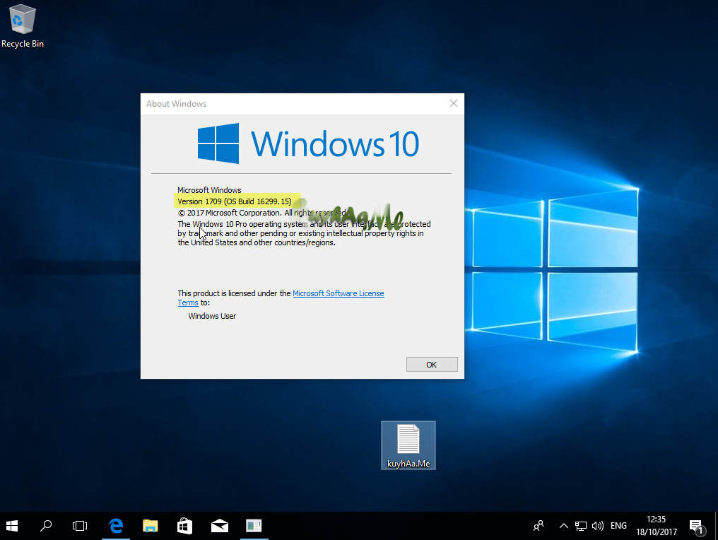 Windows 10 (1709 RS3)